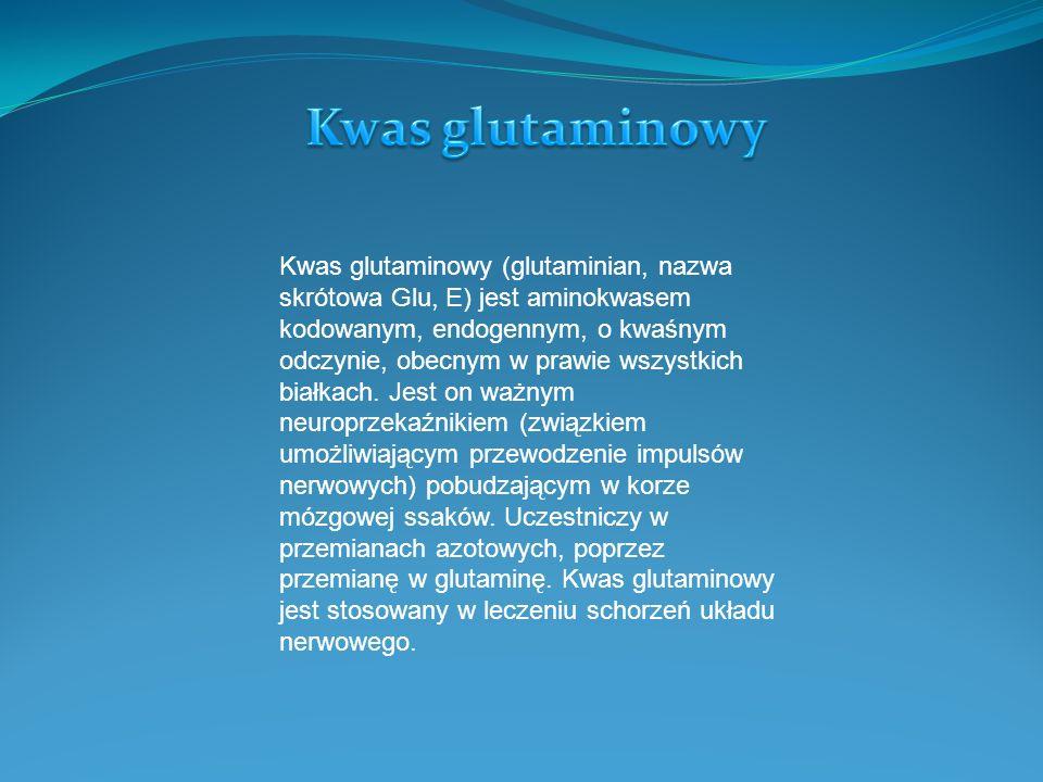 Kwas glutaminowy