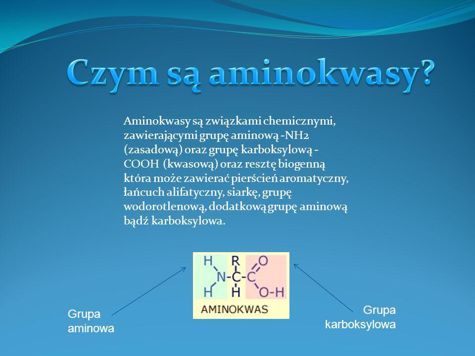 Czym są aminokwasy