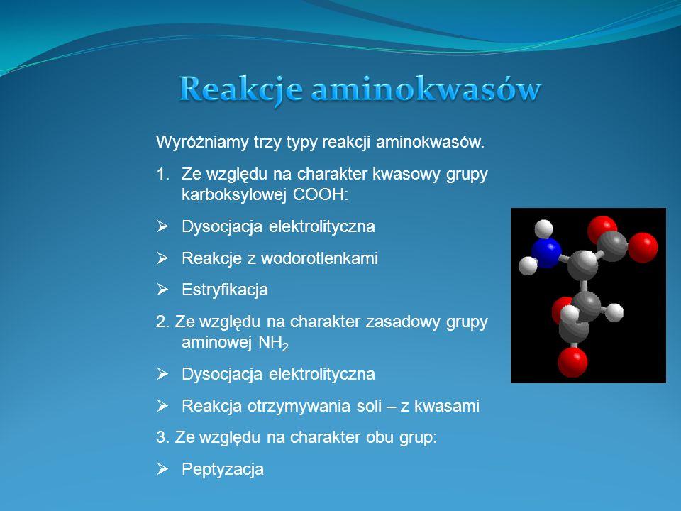 Reakcje aminokwasów Wyróżniamy trzy typy reakcji aminokwasów.