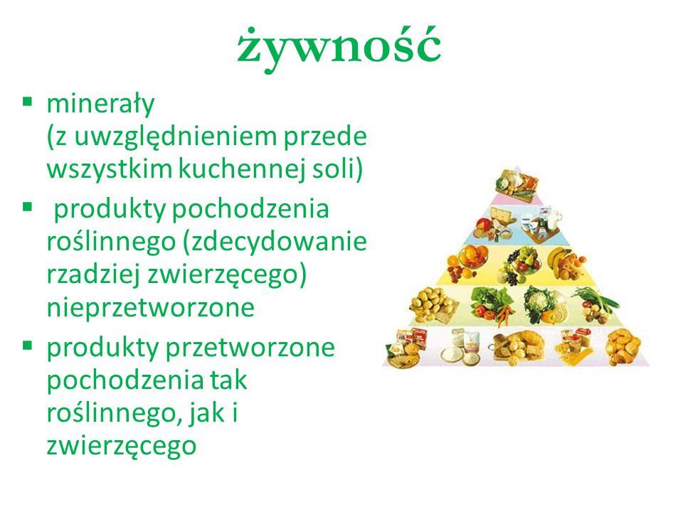 żywność minerały (z uwzględnieniem przede wszystkim kuchennej soli)