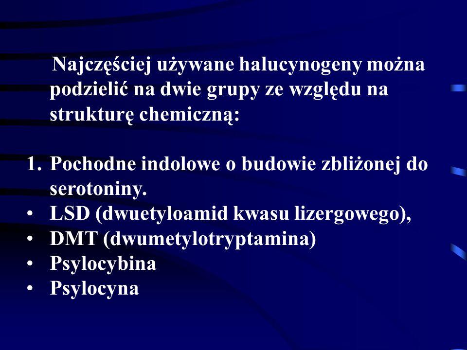 Najczęściej używane halucynogeny można podzielić na dwie grupy ze względu na strukturę chemiczną: