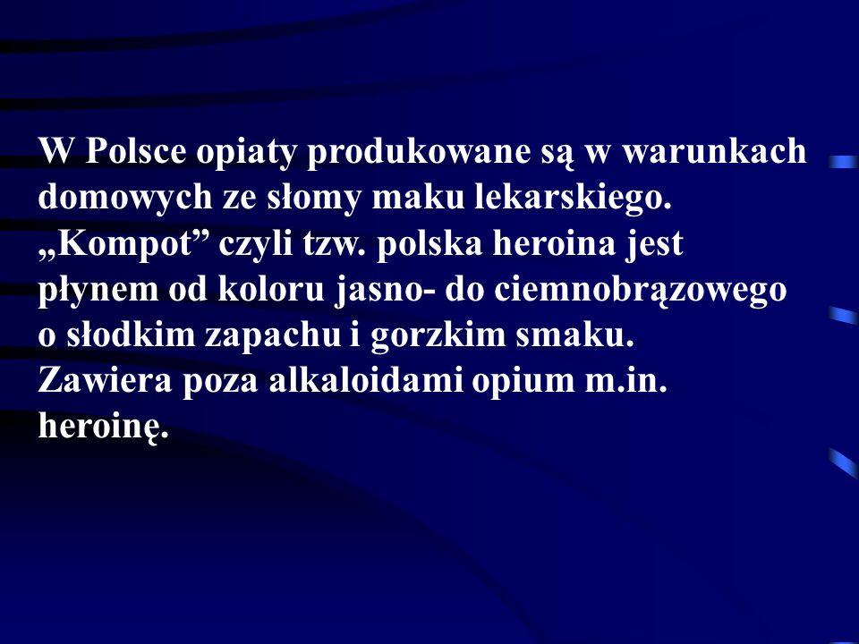 """W Polsce opiaty produkowane są w warunkach domowych ze słomy maku lekarskiego. """"Kompot czyli tzw. polska heroina jest płynem od koloru jasno- do ciemnobrązowego o słodkim zapachu i gorzkim smaku."""