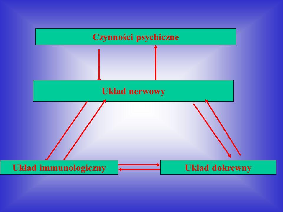 Czynności psychiczne Układ nerwowy Układ immunologiczny Układ dokrewny