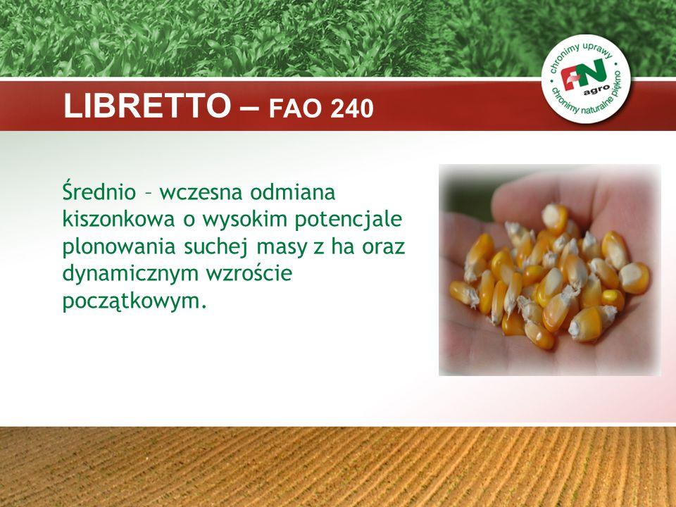 LIBRETTO – FAO 240 Średnio – wczesna odmiana kiszonkowa o wysokim potencjale plonowania suchej masy z ha oraz dynamicznym wzroście początkowym.