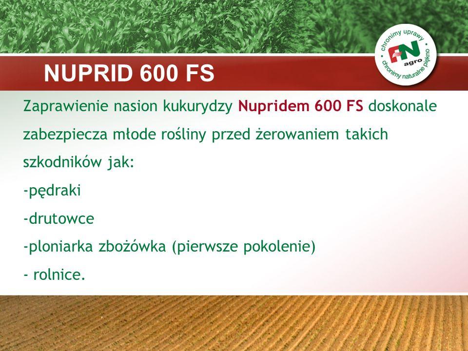 NUPRID 600 FSZaprawienie nasion kukurydzy Nupridem 600 FS doskonale zabezpiecza młode rośliny przed żerowaniem takich szkodników jak: