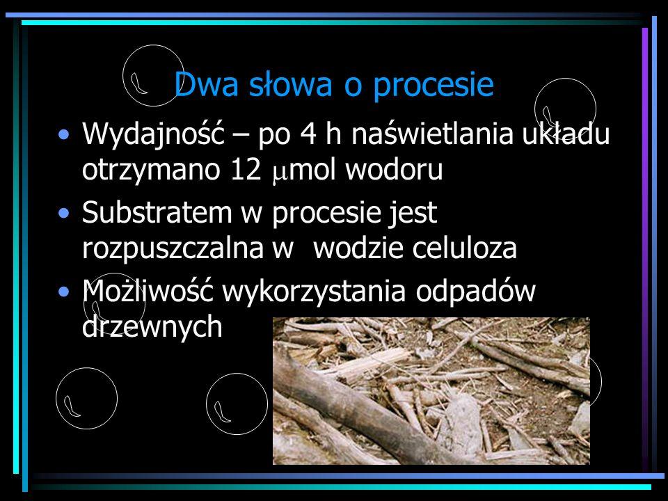 Dwa słowa o procesieWydajność – po 4 h naświetlania układu otrzymano 12 mmol wodoru. Substratem w procesie jest rozpuszczalna w wodzie celuloza.