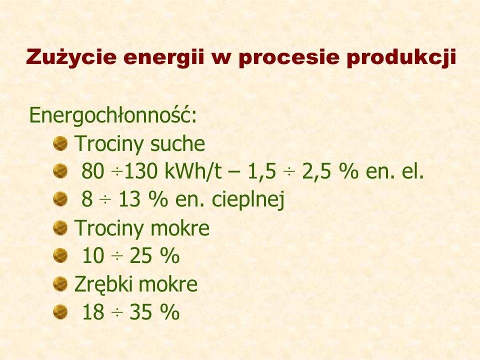 Zużycie energii w procesie produkcji