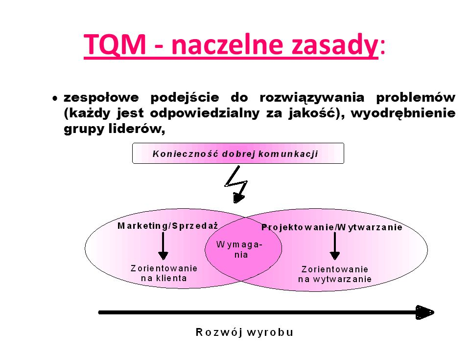 TQM - naczelne zasady: zespołowe podejście do rozwiązywania problemów (każdy jest odpowiedzialny za jakość), wyodrębnienie grupy liderów,