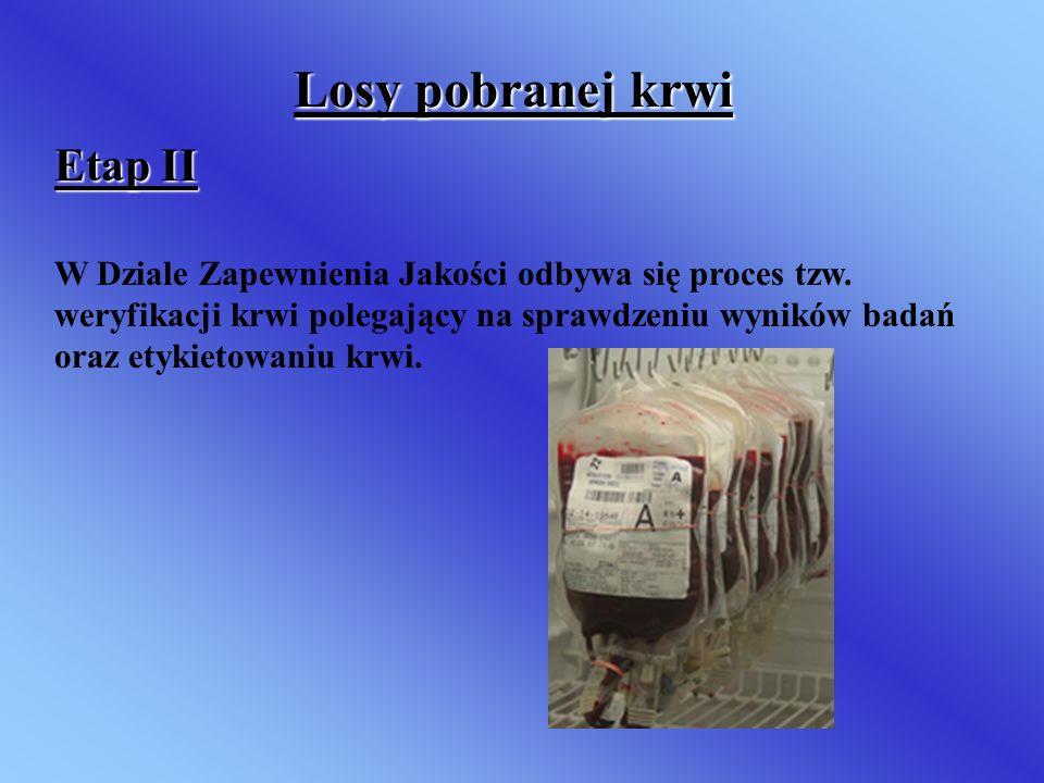 Losy pobranej krwi Etap II
