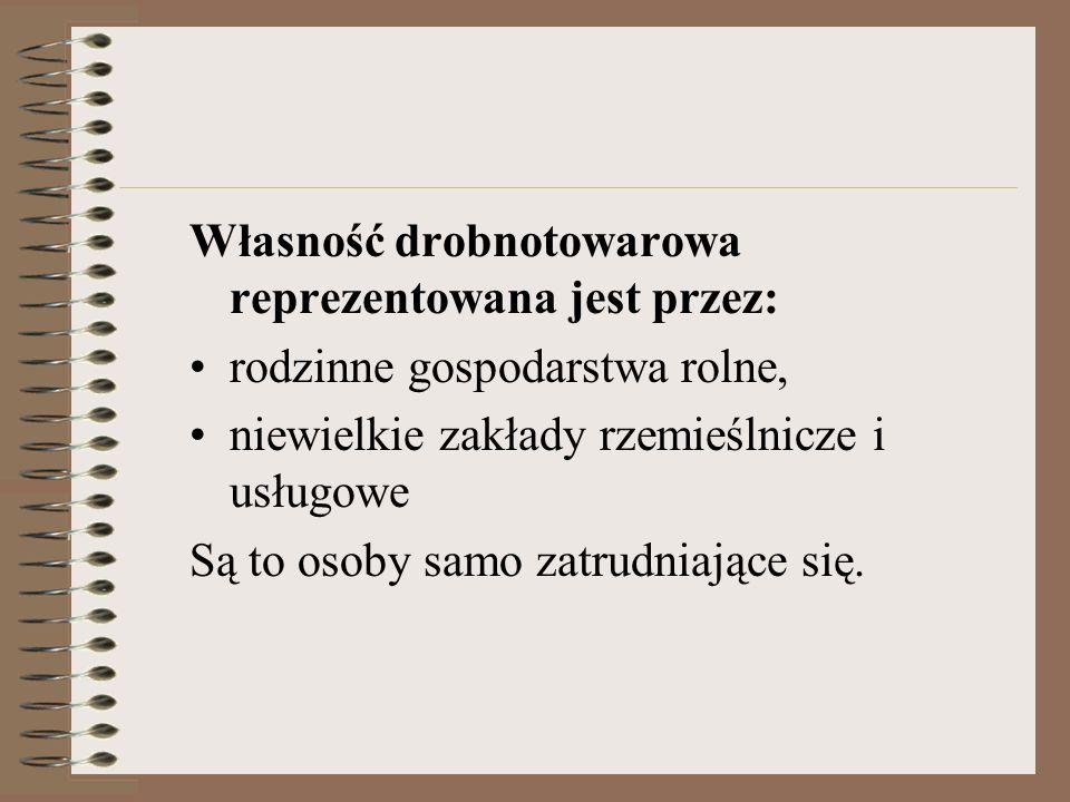 Własność drobnotowarowa reprezentowana jest przez:
