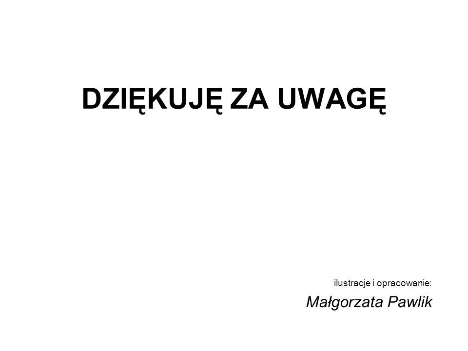 DZIĘKUJĘ ZA UWAGĘ ilustracje i opracowanie: Małgorzata Pawlik