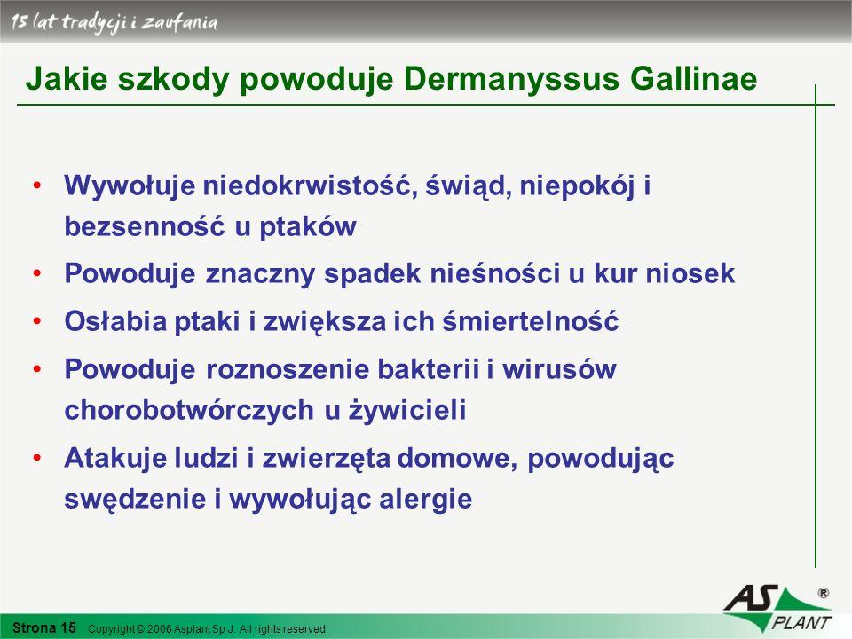 Jakie szkody powoduje Dermanyssus Gallinae