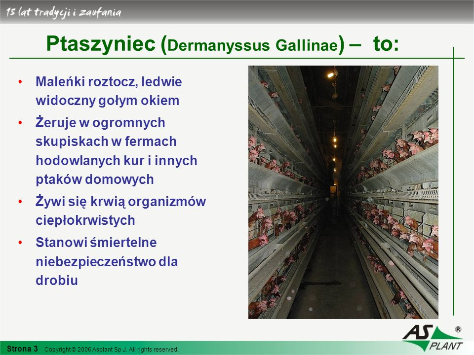Ptaszyniec (Dermanyssus Gallinae) – to: