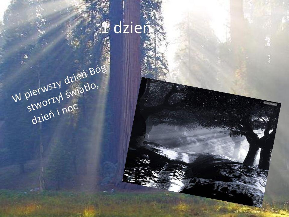 1 dzień W pierwszy dzień Bóg stworzył światło, dzień i noc