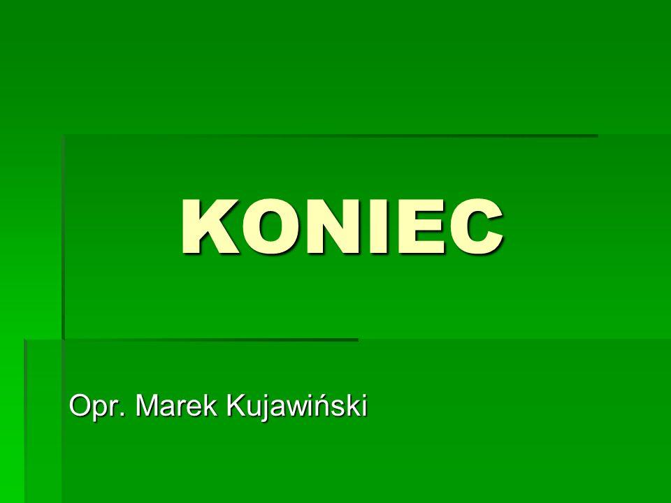KONIEC Opr. Marek Kujawiński