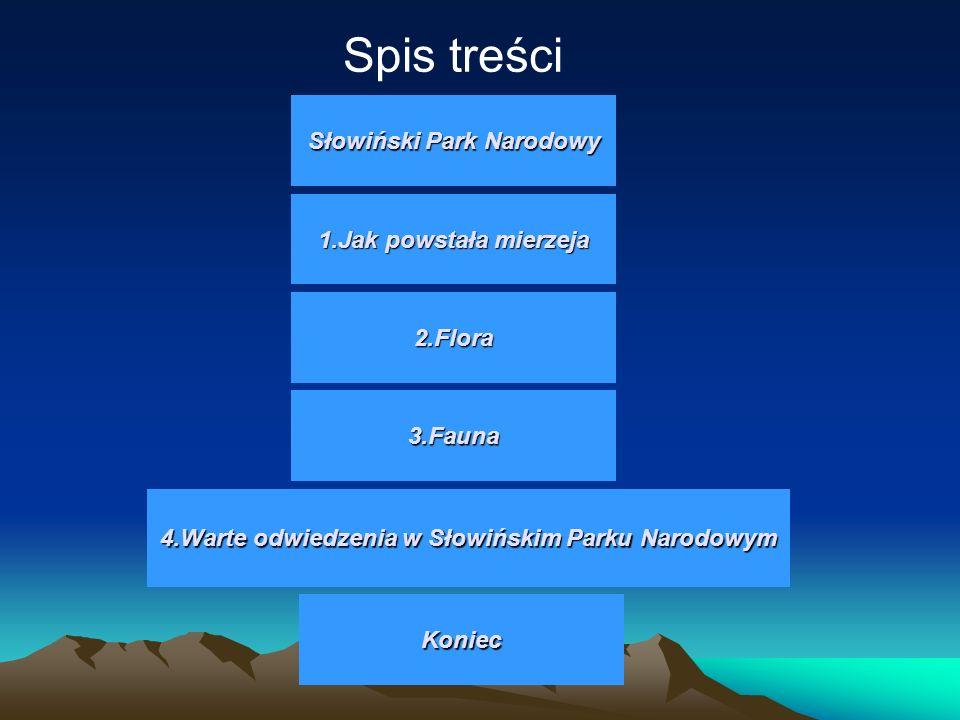 Spis treści Słowiński Park Narodowy 1.Jak powstała mierzeja 2.Flora