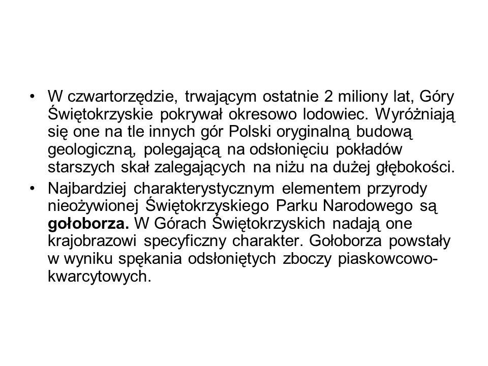W czwartorzędzie, trwającym ostatnie 2 miliony lat, Góry Świętokrzyskie pokrywał okresowo lodowiec. Wyróżniają się one na tle innych gór Polski oryginalną budową geologiczną, polegającą na odsłonięciu pokładów starszych skał zalegających na niżu na dużej głębokości.