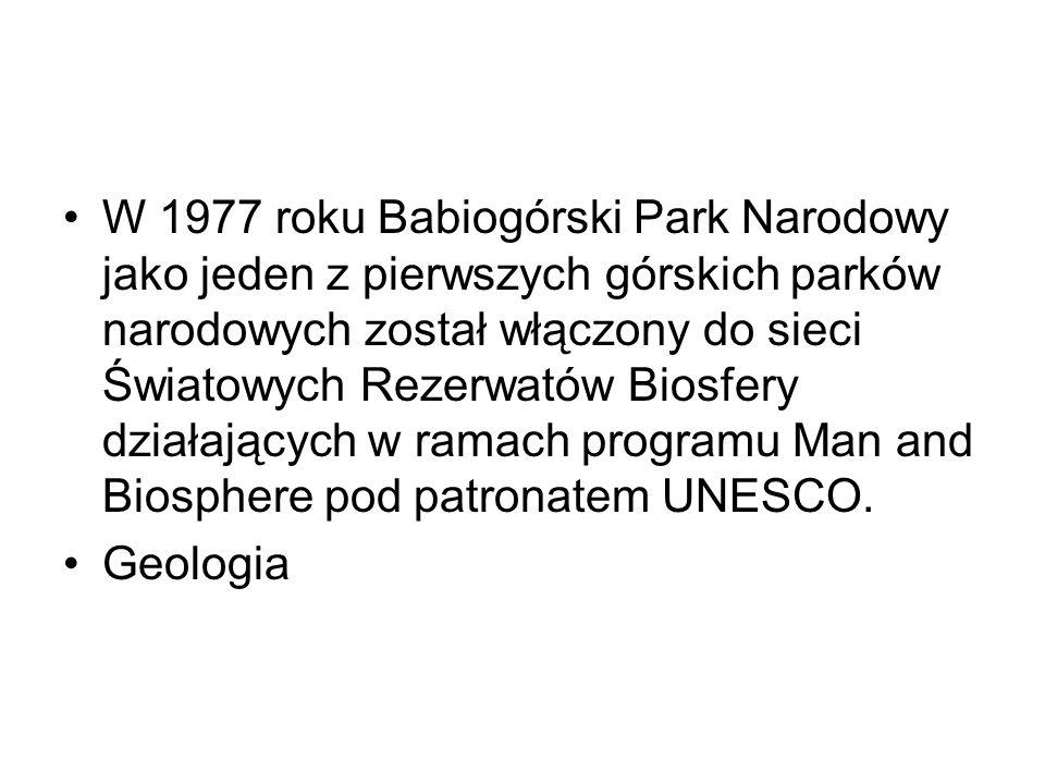 W 1977 roku Babiogórski Park Narodowy jako jeden z pierwszych górskich parków narodowych został włączony do sieci Światowych Rezerwatów Biosfery działających w ramach programu Man and Biosphere pod patronatem UNESCO.