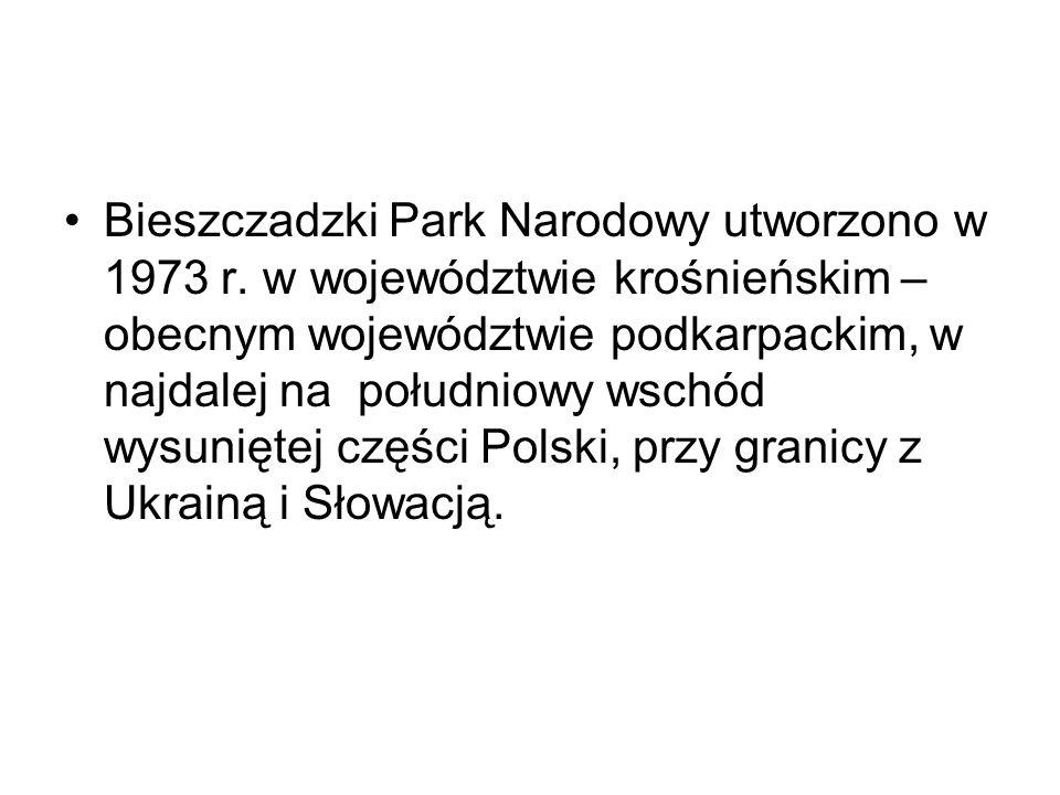Bieszczadzki Park Narodowy utworzono w 1973 r