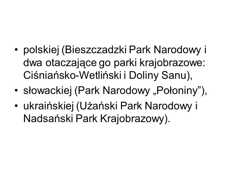 polskiej (Bieszczadzki Park Narodowy i dwa otaczające go parki krajobrazowe: Ciśniańsko-Wetliński i Doliny Sanu),
