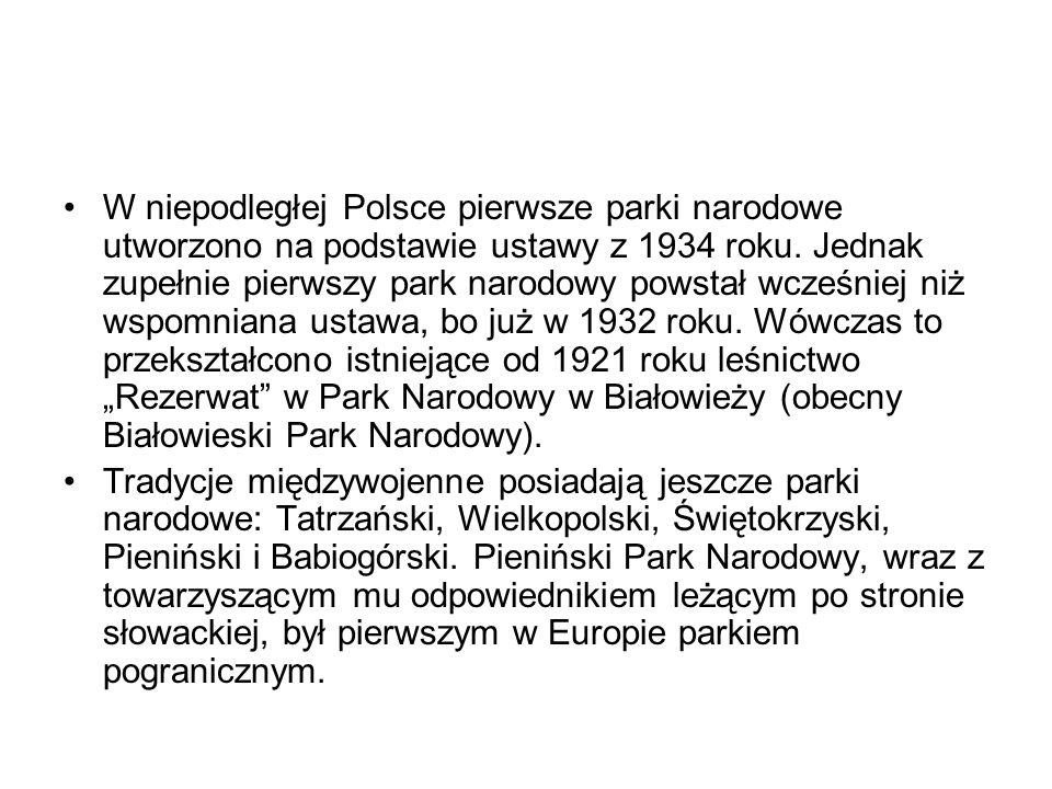 """W niepodległej Polsce pierwsze parki narodowe utworzono na podstawie ustawy z 1934 roku. Jednak zupełnie pierwszy park narodowy powstał wcześniej niż wspomniana ustawa, bo już w 1932 roku. Wówczas to przekształcono istniejące od 1921 roku leśnictwo """"Rezerwat w Park Narodowy w Białowieży (obecny Białowieski Park Narodowy)."""