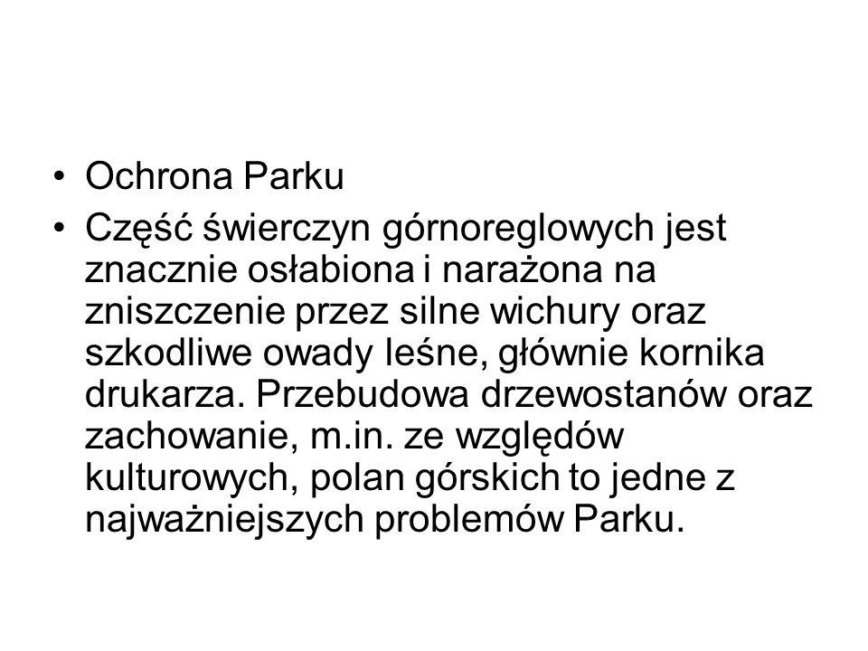 Ochrona Parku