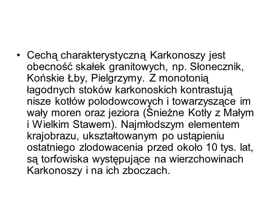 Cechą charakterystyczną Karkonoszy jest obecność skałek granitowych, np.