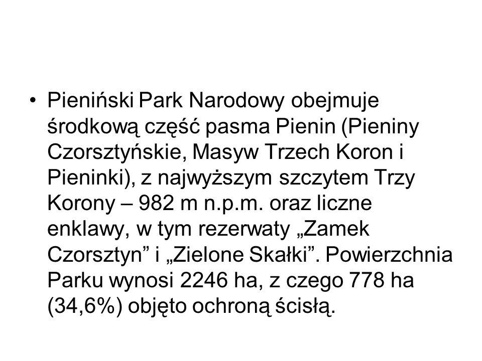 Pieniński Park Narodowy obejmuje środkową część pasma Pienin (Pieniny Czorsztyńskie, Masyw Trzech Koron i Pieninki), z najwyższym szczytem Trzy Korony – 982 m n.p.m.