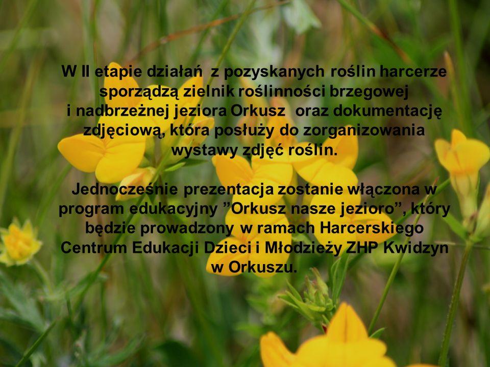 W II etapie działań z pozyskanych roślin harcerze sporządzą zielnik roślinności brzegowej i nadbrzeżnej jeziora Orkusz oraz dokumentację zdjęciową, która posłuży do zorganizowania wystawy zdjęć roślin.