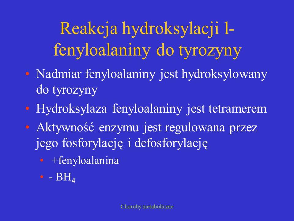 Reakcja hydroksylacji l-fenyloalaniny do tyrozyny