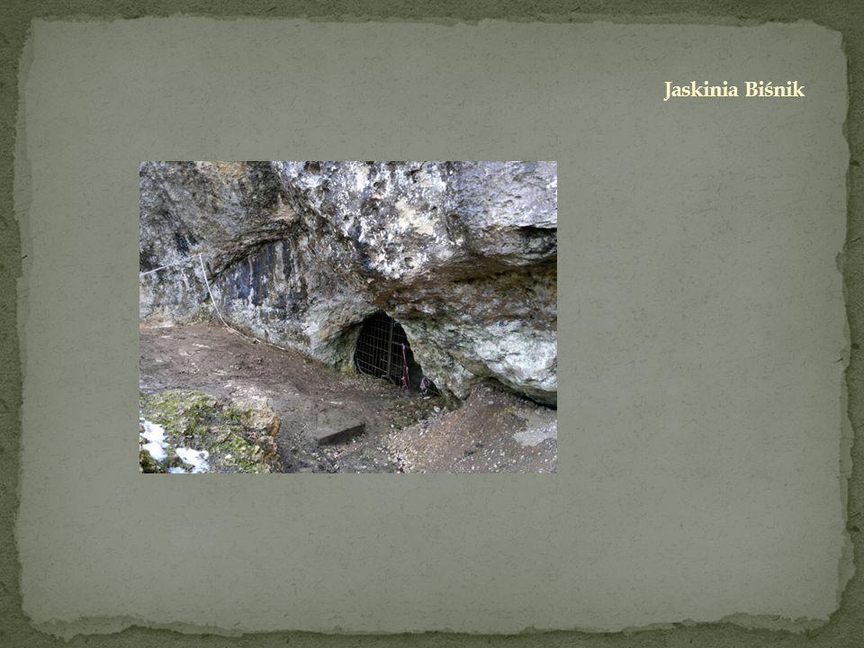 Jaskinia Biśnik