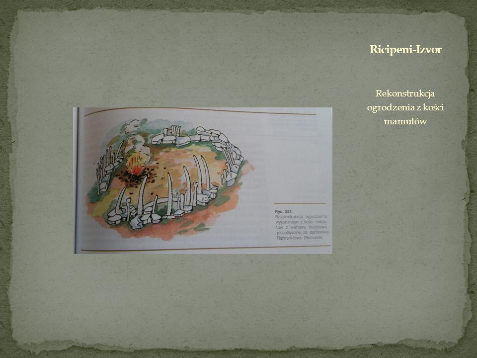 Rekonstrukcja ogrodzenia z kości mamutów
