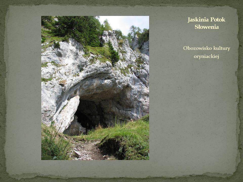 Jaskinia Potok Słowenia