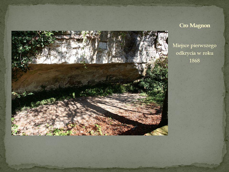 Miejsce pierwszego odkrycia w roku 1868