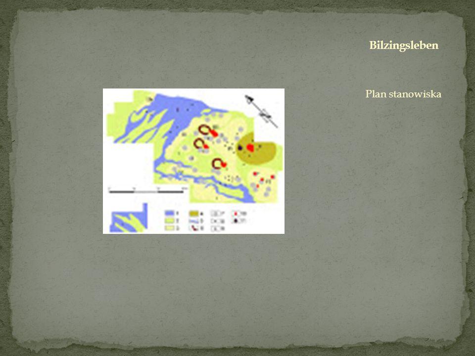 Bilzingsleben Plan stanowiska
