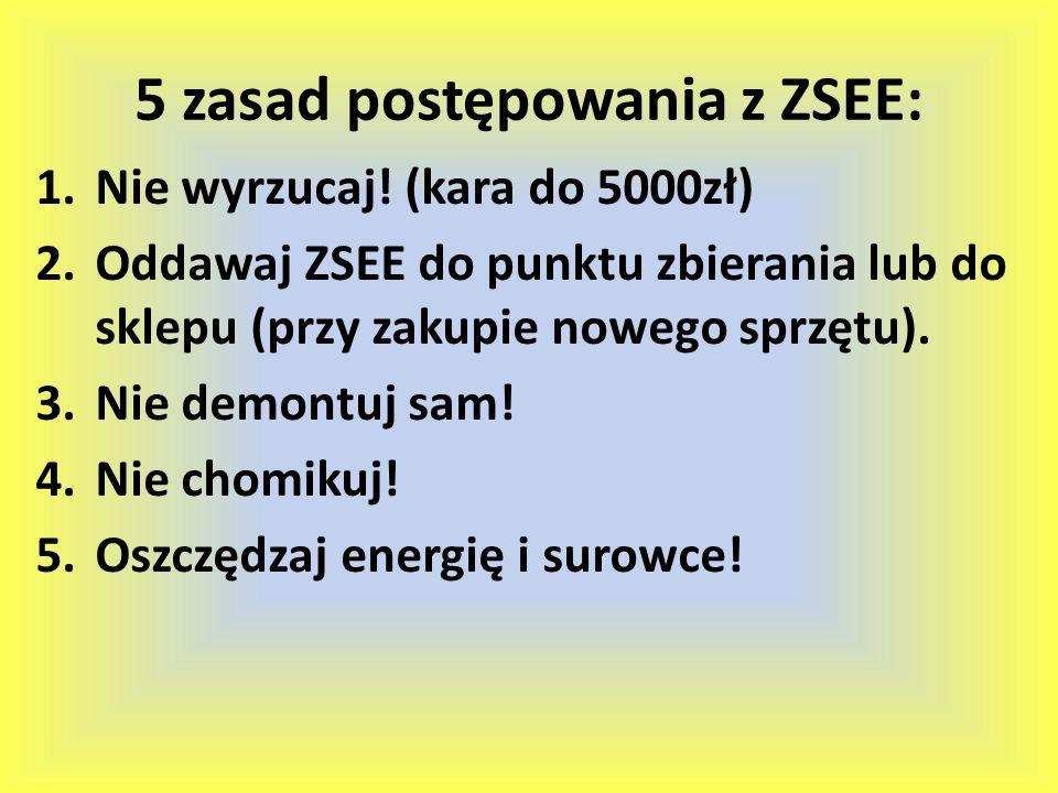 5 zasad postępowania z ZSEE: