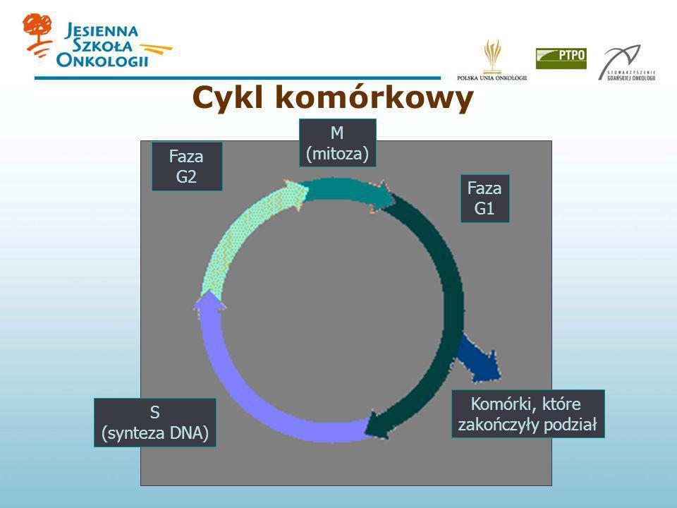 Cykl komórkowy M (mitoza) G2 (gap 2) Faza G2 Faza G1 Komórki, które