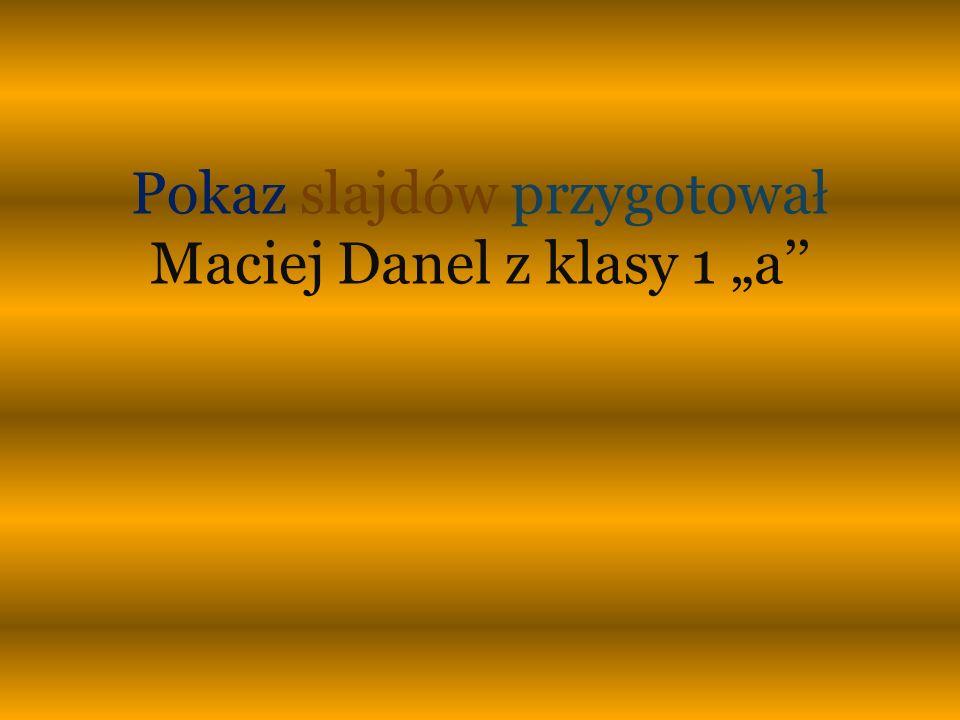 """Pokaz slajdów przygotował Maciej Danel z klasy 1 """"a''"""