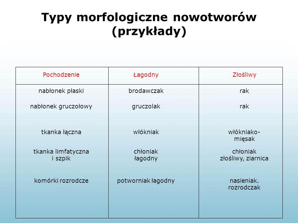 Typy morfologiczne nowotworów (przykłady)