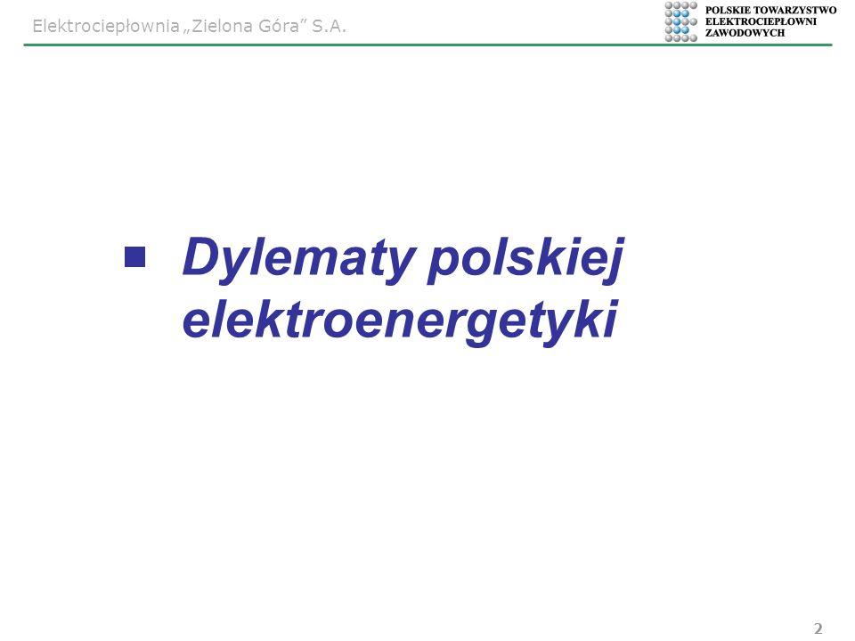 Dylematy polskiej elektroenergetyki