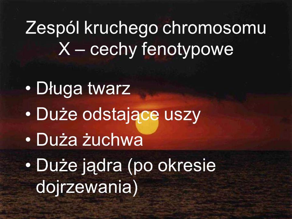 Zespól kruchego chromosomu X – cechy fenotypowe
