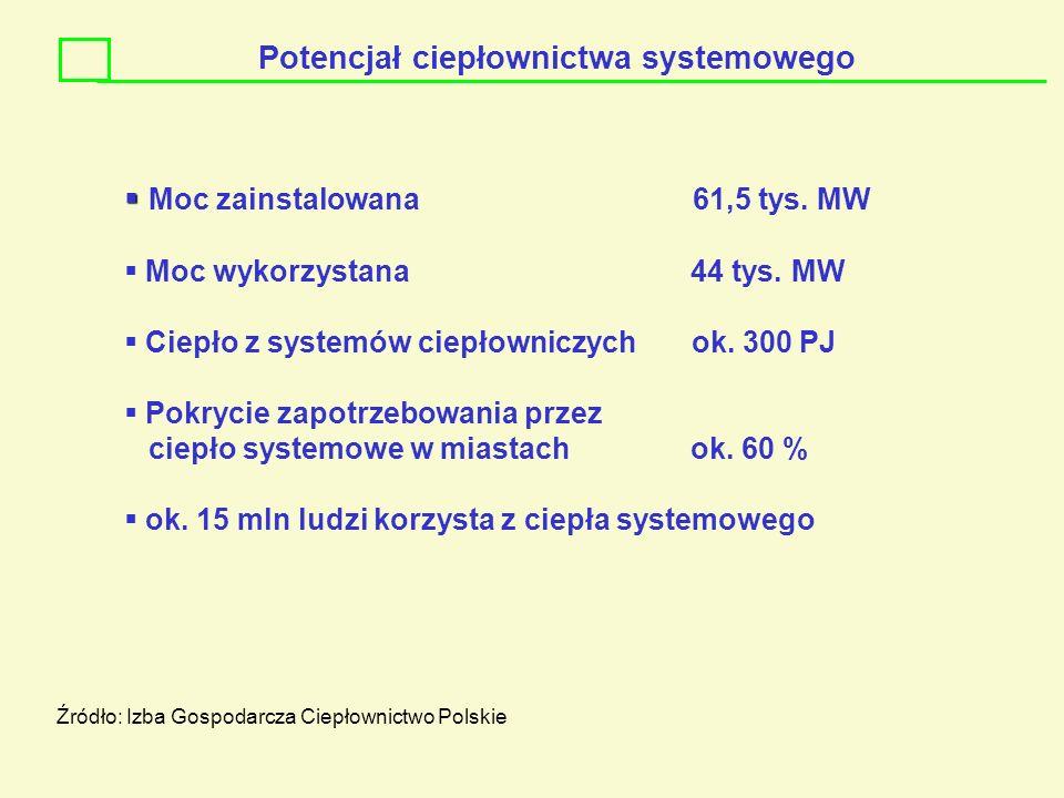 Potencjał ciepłownictwa systemowego