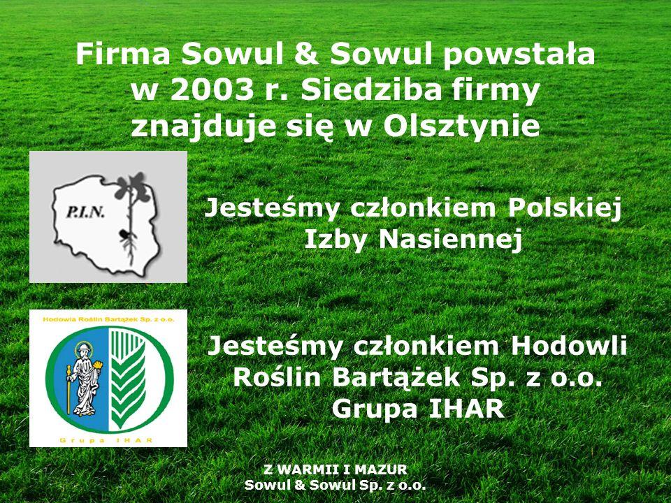 Firma Sowul & Sowul powstała w 2003 r