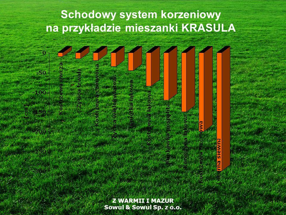 Schodowy system korzeniowy na przykładzie mieszanki KRASULA