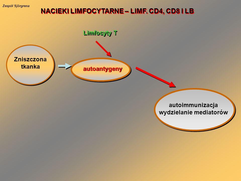 NACIEKI LIMFOCYTARNE – LIMF. CD4, CD8 I LB wydzielanie mediatorów