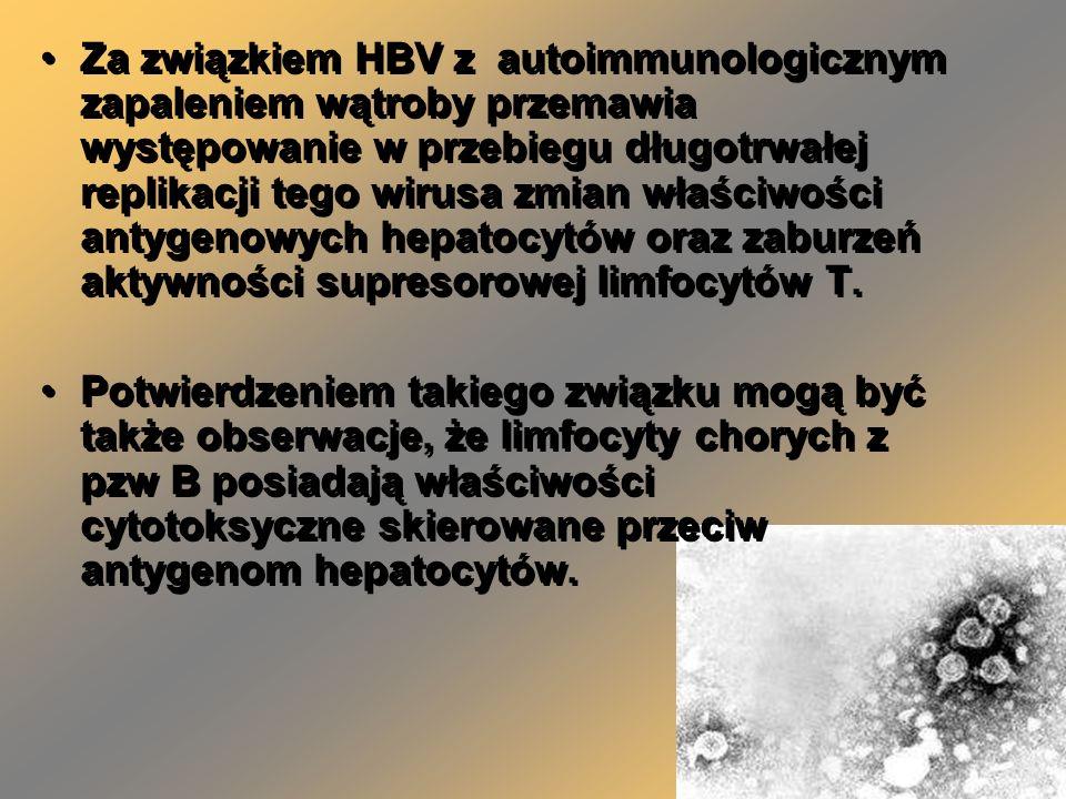 Za związkiem HBV z autoimmunologicznym zapaleniem wątroby przemawia występowanie w przebiegu długotrwałej replikacji tego wirusa zmian właściwości antygenowych hepatocytów oraz zaburzeń aktywności supresorowej limfocytów T.