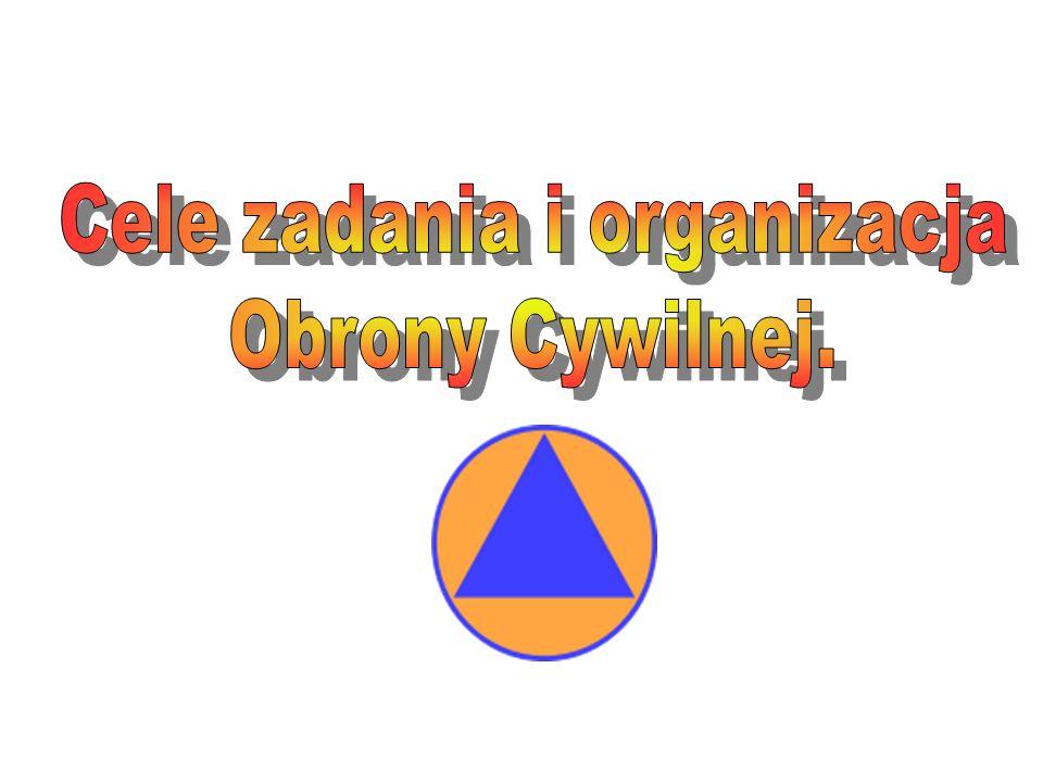 Cele zadania i organizacja