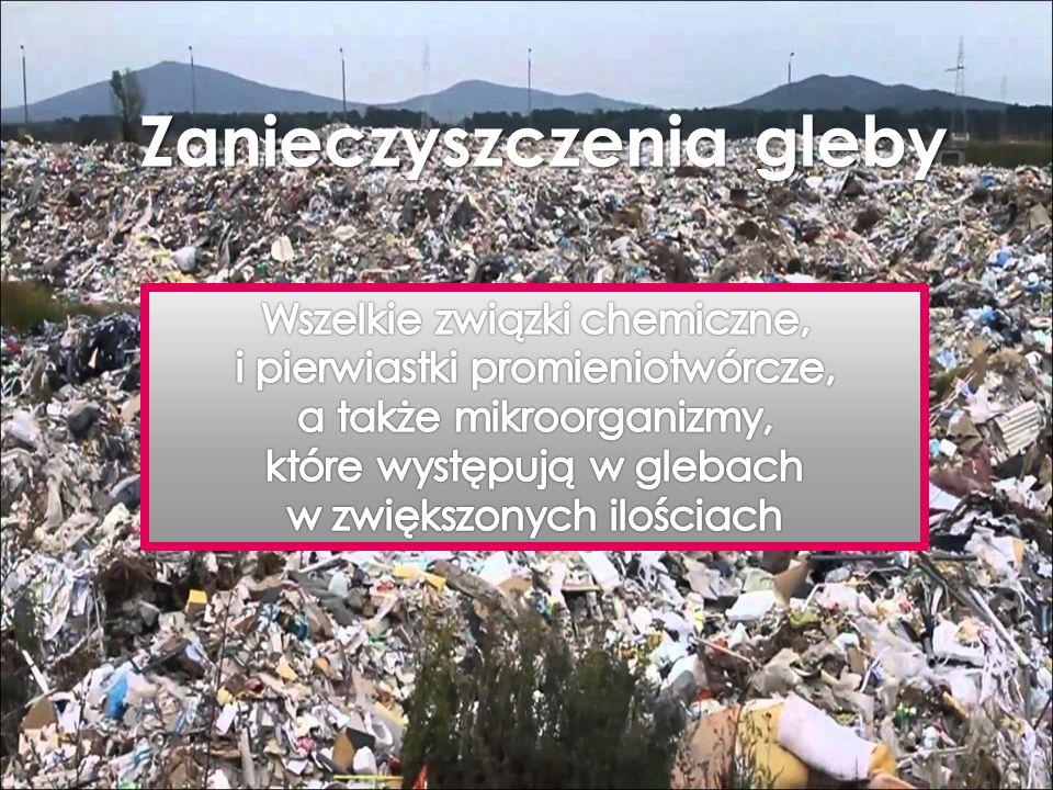 Zanieczyszczenia gleby