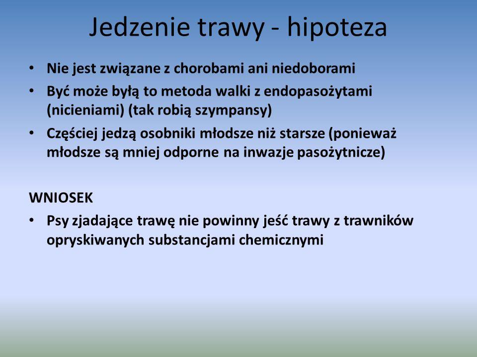 Jedzenie trawy - hipoteza