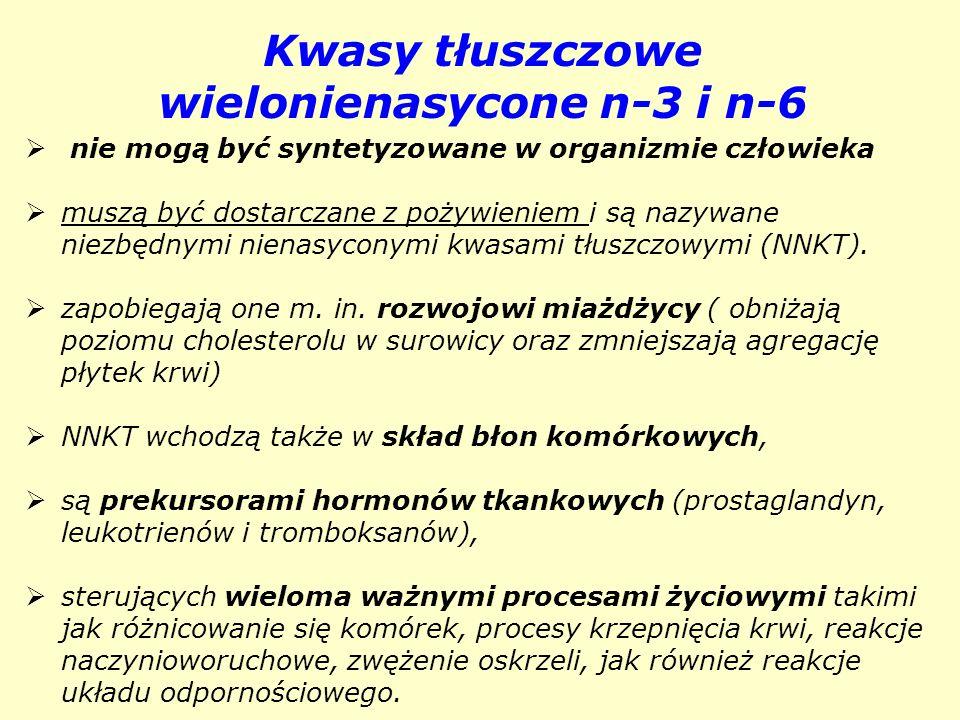 Kwasy tłuszczowe wielonienasycone n-3 i n-6